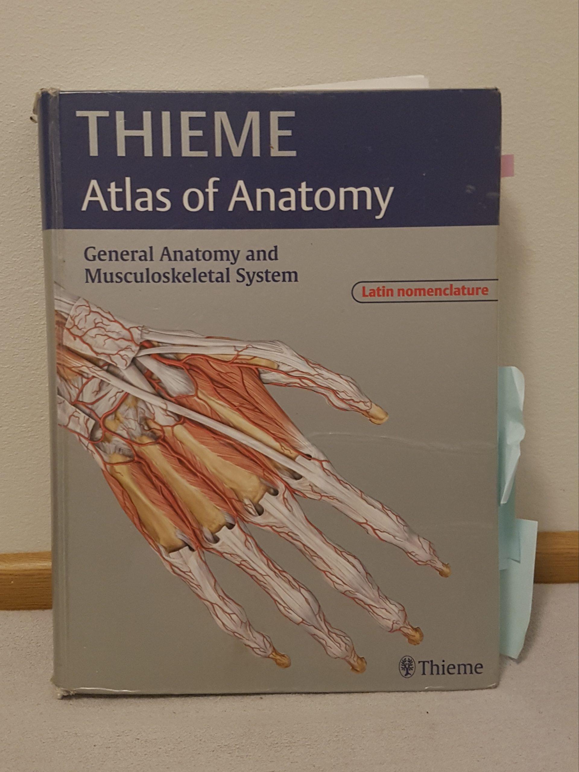 Paras anatomian kirja on THIEME Atlas of Anatomy.